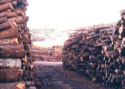 foto_177673_Paneles-de-madera-en-Siero